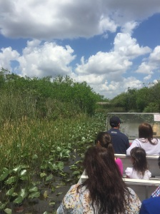 View from our seats on tha air boat during our tour in the Everglades. Photo courtesy, Lindsay Eichhold.
