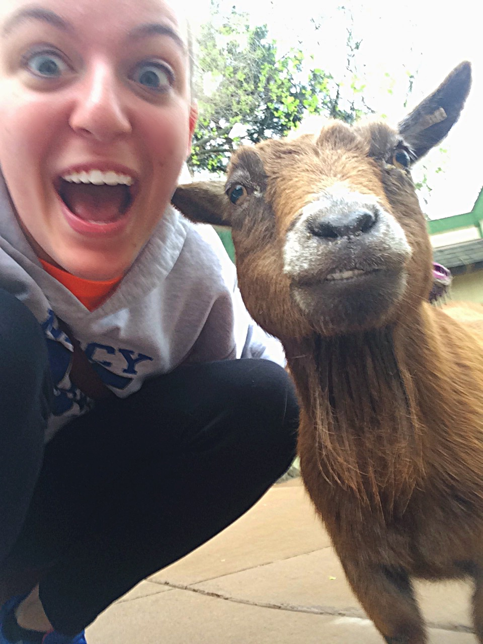 Emma Dougoud '16 smiles with a photogenic goat