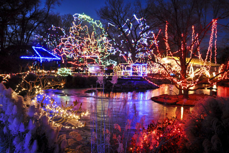 festival of lights cincinnati zoo2