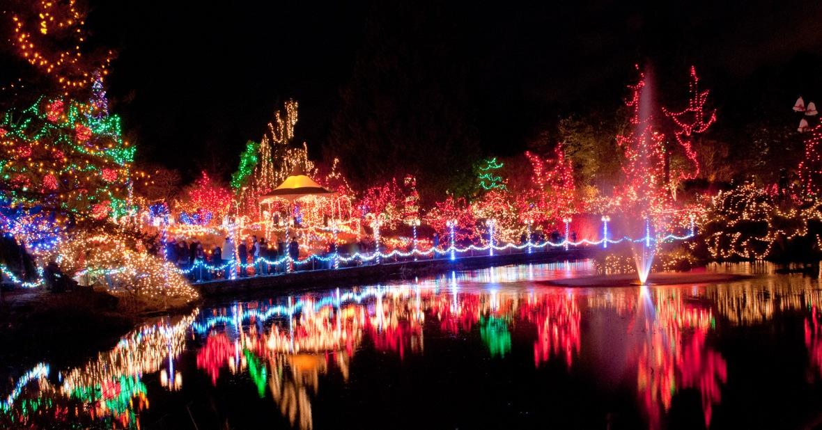 festival of lights cincinnati zoo3